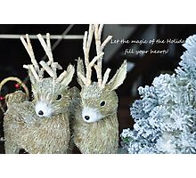 Reindeer games! Photographic Print