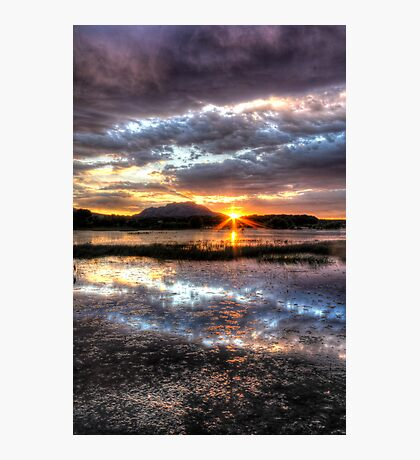 Willow Lake Blues Photographic Print