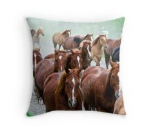 Part of the herd Throw Pillow