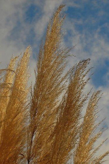 Glittery Grass by photojeanic