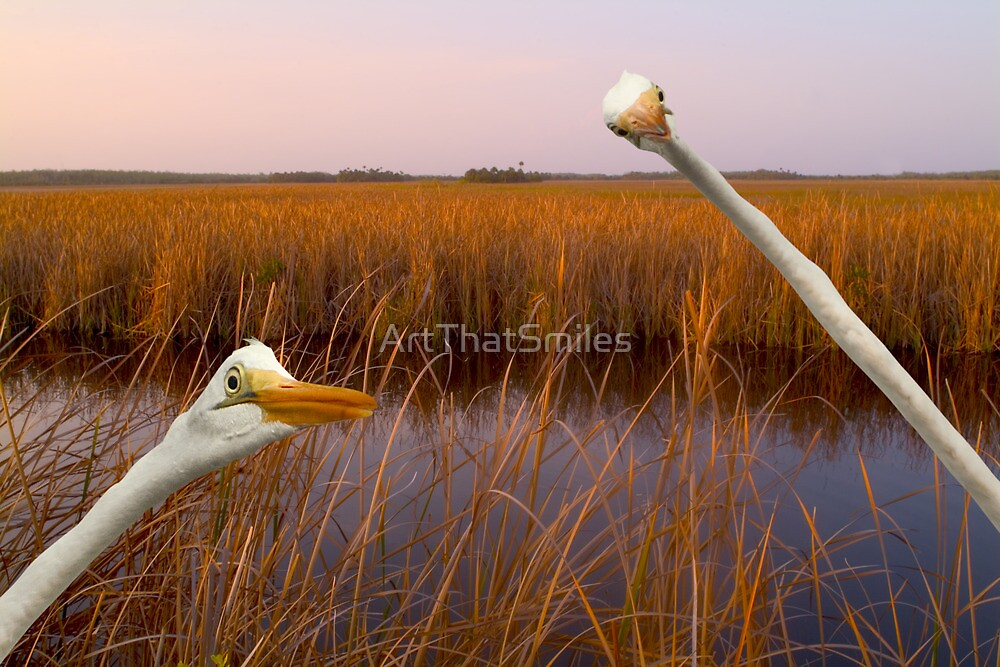 """Birds Eye View"" - great egrets sneak into the picture by ArtThatSmiles"