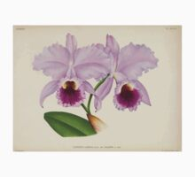 Iconagraphy of Orchids Iconographie des Orchidées Jean Jules Linden V14 1898 0116 One Piece - Long Sleeve