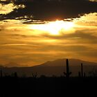 Sahuarita Sunset  by Kimberly P-Chadwick