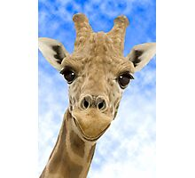 """""""Funny Face"""" - Giraffe giving a very animated smiling face Photographic Print"""