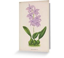 Iconagraphy of Orchids Iconographie des Orchidées Jean Jules Linden V15 1899 0058 Greeting Card