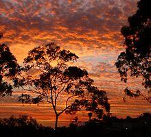 Tweed River Sunset by aussiebushstick
