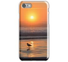 Gull and Surf iPhone Case/Skin