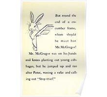 The Tale of Peter Rabbitt Beatrix Potter 1916 0025 Around the Corner McGregor Stop Thief Poster