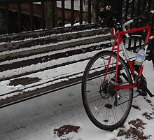 Biking in the Snow by Jessica Perry  George