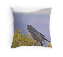 Death Valley - Ravens World Throw Pillow