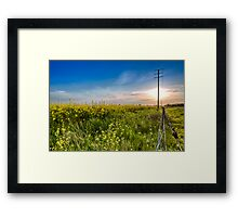 Canola Country Road Framed Print