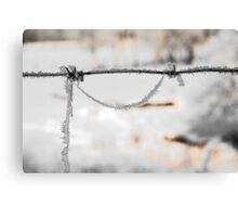barbwire and frost Canvas Print