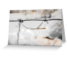 barbwire and frost Greeting Card