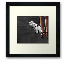dogged attention Framed Print