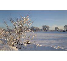 Winter Scene Dalmeny Photographic Print