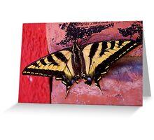 tiger swallowtail on brick Greeting Card