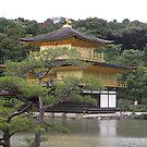 Golden Pavillion by James  Yu