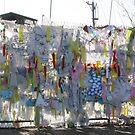 Peace along the DMZ by James  Yu