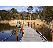The Sanctuary (12) - Tidbinbilla Nature Reserve Photographic Print