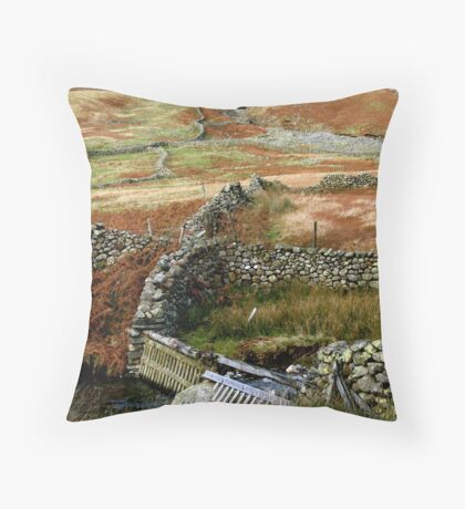 Lakeland Wall Throw Pillow