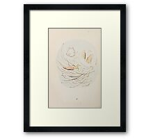The Story of a Fierce Bad Rabbit Beatrix Potter 1906 0046 This is What Happens Framed Print