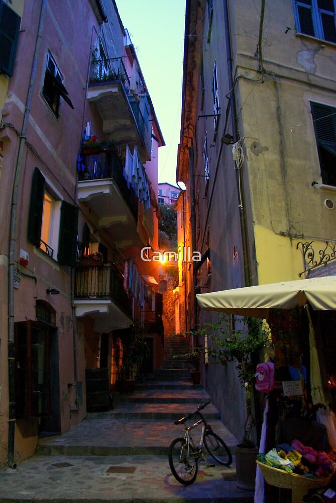 Monterosso Alley by Camilla