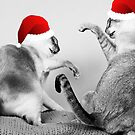 Merry Fuckin Christmas by clydeessex