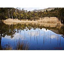 The Sanctuary (15) - Tidbinbilla Nature Reserve Photographic Print