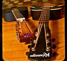 Josh's Guitars by Patrick T. Power