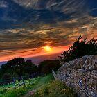 Summer Solstice by Billy Hodgkins