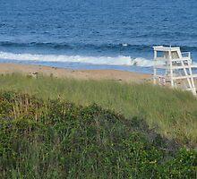 No Lifeguard on Duty by Nicole Jeffery