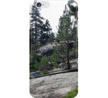 Granite Slab iPhone Case/Skin