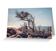 Graveyard by the sea Greeting Card