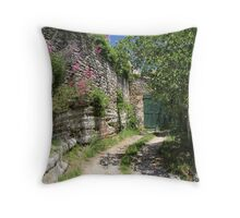 Garage in Village of Lacoste, France Throw Pillow