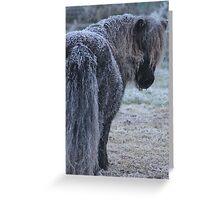 Frosty Bertie Greeting Card