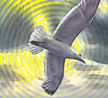 Circle seascape with seagull 29 08 2015 Sticker