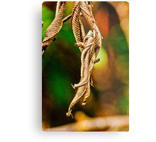 dried leaves Metal Print