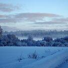 Winter Dream by Ritva Ikonen