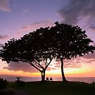 sunset tree silhouette, Wailea beach, Maui, Hawaii by Christopher Barton