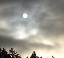 Sun wins! by Rainydayphotos