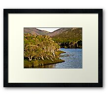 tidal riverscape 3 Framed Print