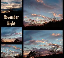 November Night by vigor