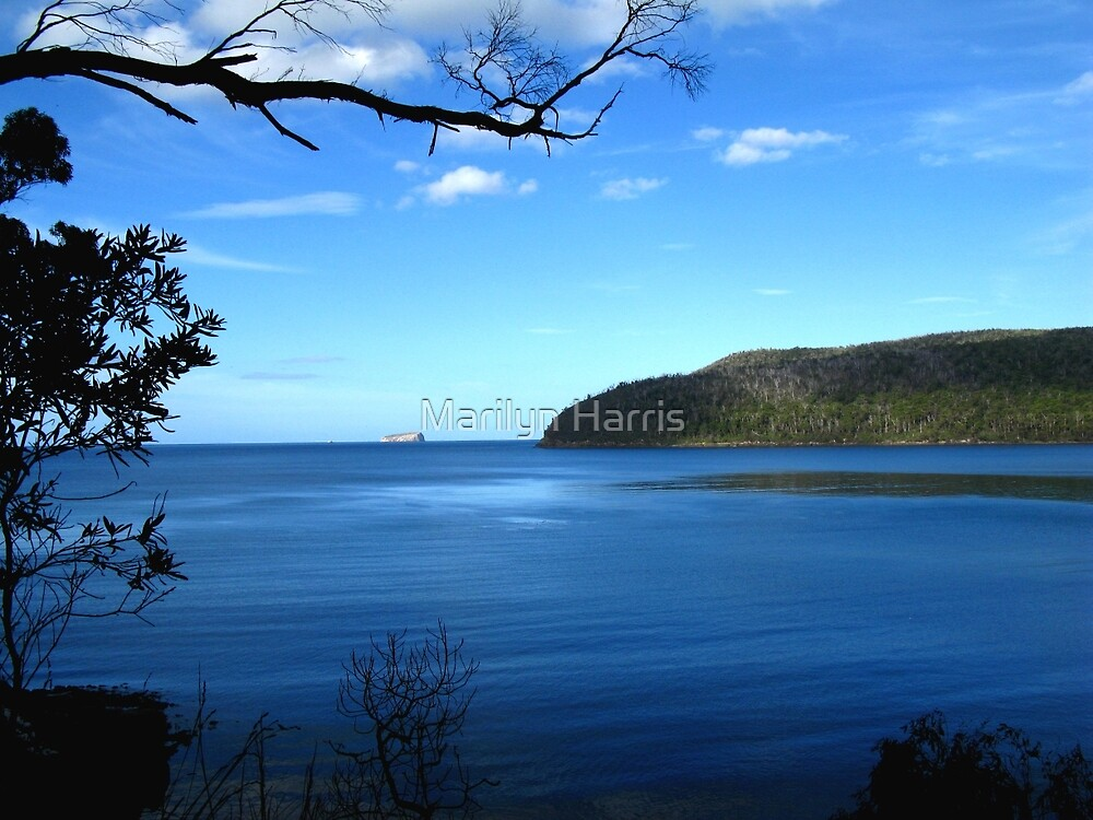 Fortescue Bay by Marilyn Harris
