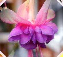 Floral Collage Sticker