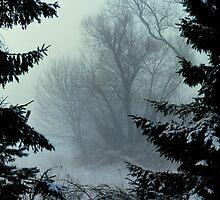 Morning haze by Alan Mattison