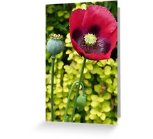 Poppies in London Greeting Card