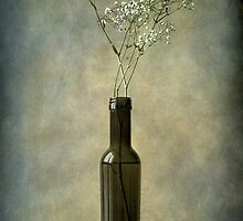 The olive oil bottle by Barbara  Corvino