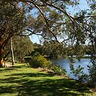Lakeside in the national park by georgieboy98