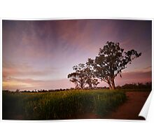 Wheat Sunset Poster