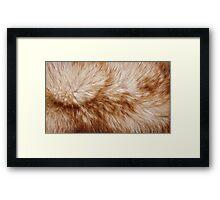 Red fox rough fur texture cloth  Framed Print